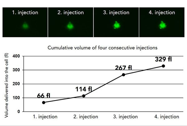 4 serial injections into the same cell. Lucifer Yellow was used to calculate the volume of solution injected.