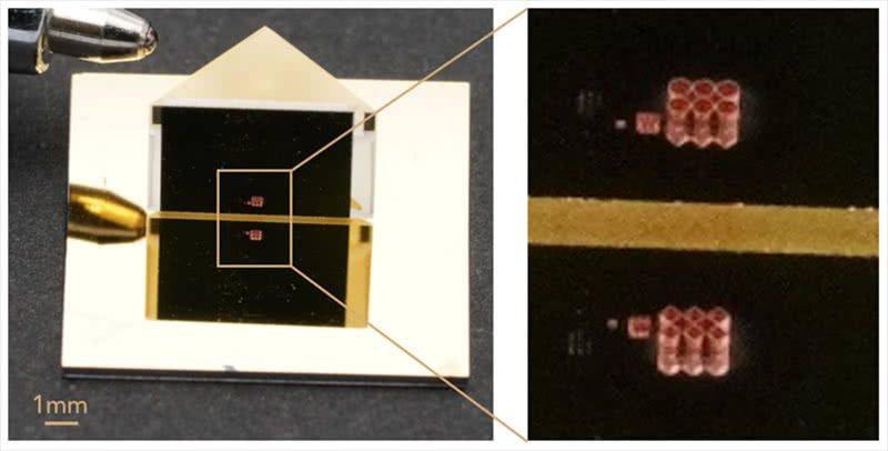 The impossible objects in three different sizes photographed with a macro objective