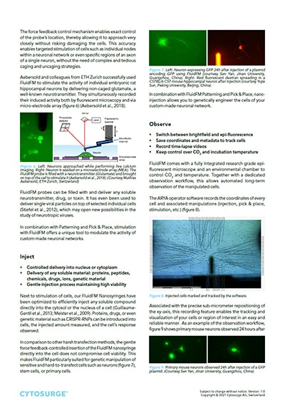FluidFM Neuroscience - Application Note preview 3